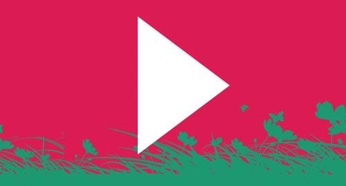 #Youtube